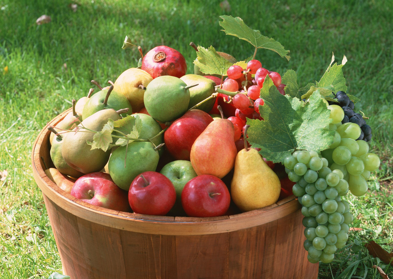 как похудеть без овощей и фруктов