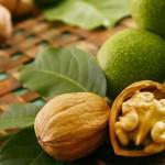 Грецкий орех: что надо знать о нём + 4 рецепта
