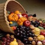 Сушка овощей, фруктов и ягод: полезная информация + рецепты пастилы и цукатов