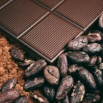 Энциклопедия: шоколад