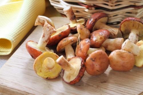 Заготовка грибов