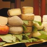 Сыр: классификация, история и интересные факты